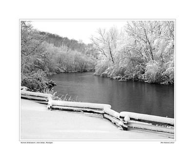 Nichols Arboretum #5 Art Print by Phil Perkins