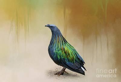 Photograph - Nicobar Pigeon by Eva Lechner