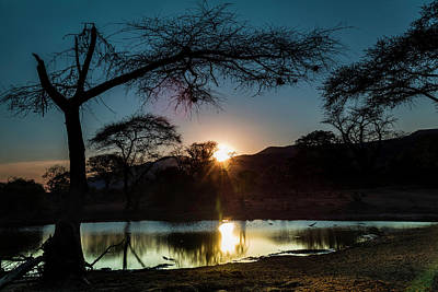 Photograph - Night At The Waterhole by Fran Gallogly