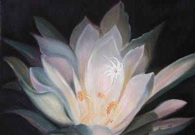 Night Blooming Cereus Painting - Night Bloom by Janine Shideler