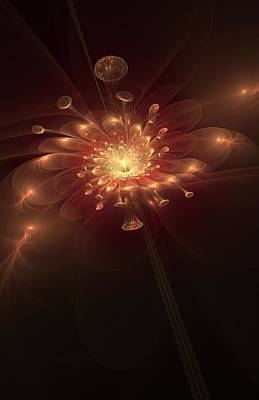 Digital Art - Night Bloom by Svetlana Nikolova