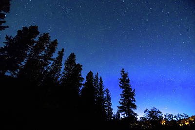 Photograph - Night Blues by James BO Insogna