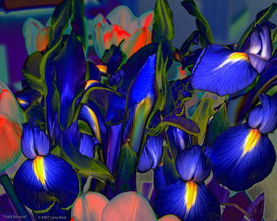 Digital Art - Night Bouquet by Larry Beat
