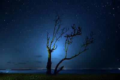 Photograph - Night Breezes by Mark Andrew Thomas