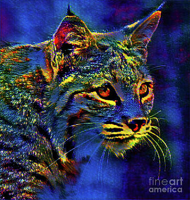 Digital Art - Night Cat by Kathy Kelly
