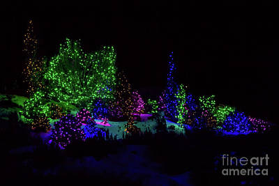 Photograph - Night Christmas Lights by Steven Parker