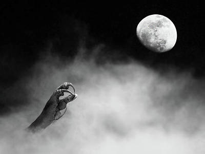 Photograph - Night Claw by Art Cole