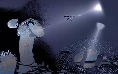 Night Dive Art Print by Mushtaq Bhat
