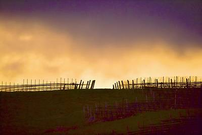 Photograph - Night Falling Golden Sky by Tracy Rice Frame Of Mind