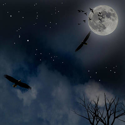 Photograph - Night Flight by Ken Frischkorn