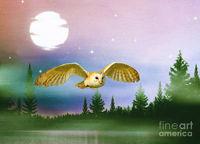 Barn Owl Photograph - Night Flight by Laura D Young