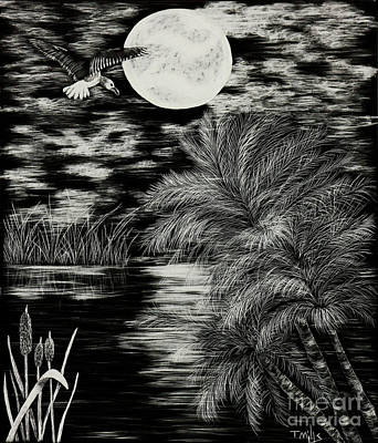 Drawing - Night Flight by Terri Mills