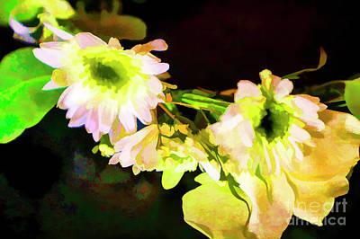 Photograph - Night Flowers by Rick Bragan