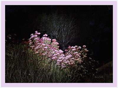 Photograph - Night Flowers by YoMamaBird Rhonda