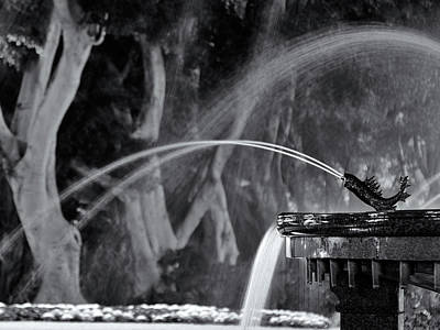 Photograph - Night Fountain by Nicholas Blackwell