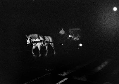 Photograph - Night Horse Central Park by Dave Beckerman
