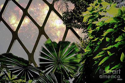 Night In The Arboretum Art Print