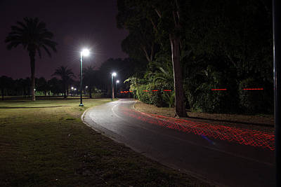 Photograph - Night In The Park by Dubi Roman