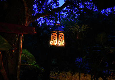 Photograph - Night Lantern by David Lee Thompson