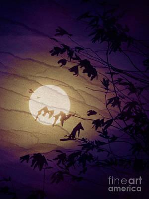 Photograph - Night Light by Robert Ball