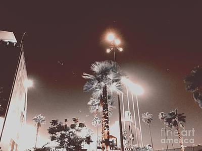 Photograph - Night Lights by Jenny Revitz Soper