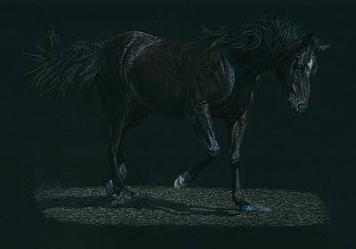 Running Horses Drawing - Night Mare by Laura Klassen