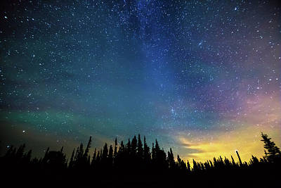 Photograph - Night Of Enchantment by James BO Insogna