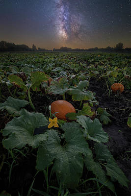 Pumpkin Patch Photograph - Night Of The Pumpkin by Aaron J Groen