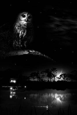 Alligator Photograph - Night On Alligator Creek by Mark Andrew Thomas