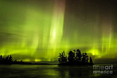Photograph - Night On Rainy Lake by Lori Dobbs