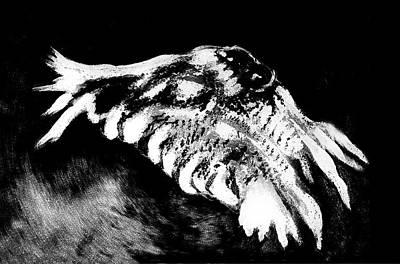 Digital Art - Night Owl by Sandra Silva