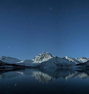 Photograph - Night Reflection by Frank Olsen