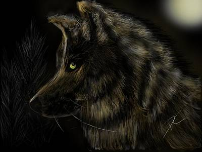 Digital Art - Night Silent Wolf by Darren Cannell