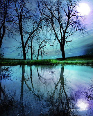 Photograph - Night Sky Blue Moon by Gina Signore