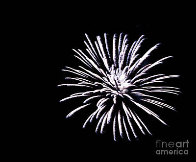 Photograph - Night Sky Fireworks by Suzanne Luft