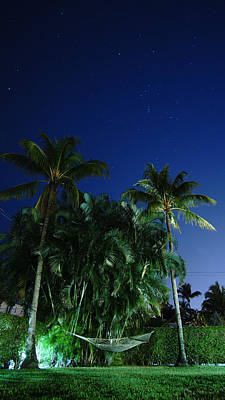 Photograph - Night Sky Hammock Delray Beach by Lawrence S Richardson Jr