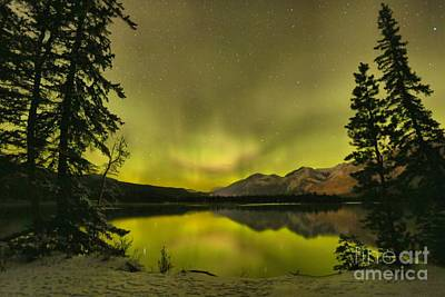 Photograph - Night Sky Magic by Adam Jewell