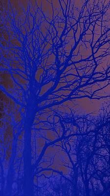Night Solstice  Art Print