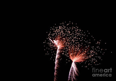 Photograph - Night Sparklers by Suzanne Luft