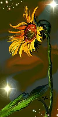 Digital Art - Night Sunflower by Darren Cannell