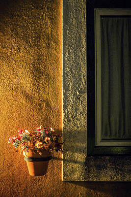Photograph - Night Vase by Carlos Caetano
