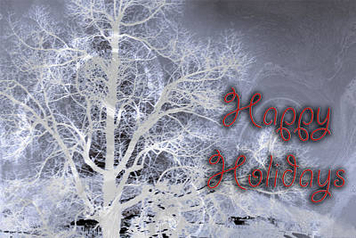 Photograph - Night Vision I Happy Holidays Card 3 by Lesa Fine