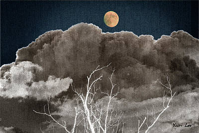 Photograph - Night Vision by Yuri Lev
