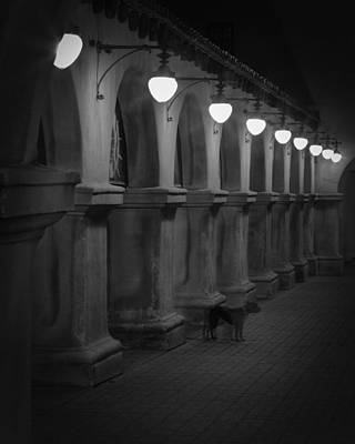 Photograph - Night Watchman by Dusty Wynne