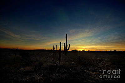 Photograph - Nightfall by David Arment