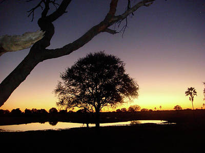 Photograph - Nightfall In Africa by Karen Zuk Rosenblatt