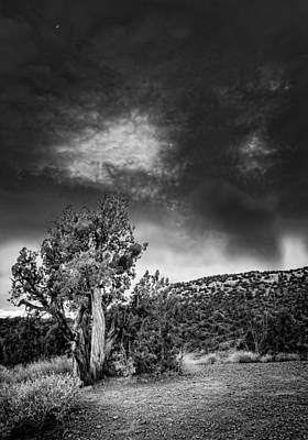 Photograph - Nightfall In Arizona by Alexey Stiop