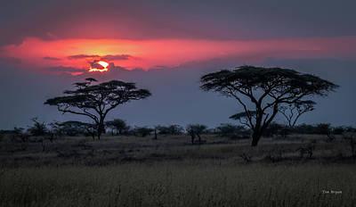 Photograph - Nightfall On Namiri Plains by Tim Bryan