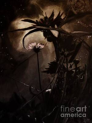 Nightflower Art Print by Vanessa Palomino