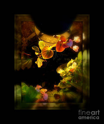 Photograph - Nightlight by Miriam Danar